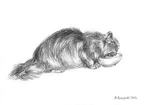 Художественный проект Один день из жизни кошки. Марина Ефремова. Кошка ест. 2012. Бумага, уголь. 30х20