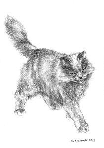 Художественный проект Один день из жизни кошки. Марина Ефремова. Кошка играет с бумажкой. 2012. Бумага, уголь. 30х20