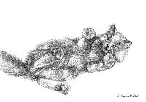 Художественный проект Один день из жизни кошки. Марина Ефремова. Кошка приглашает поиграть. 2012. Бумага, уголь. 30х20