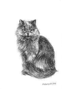 Художественный проект Один день из жизни кошки. Марина Ефремова. Кошка обижается. 2012. Бумага, уголь. 30х20