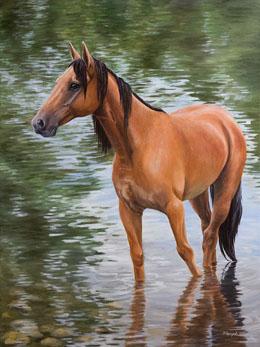 Марина Ефремова. Лошадь у берега пруда. 2016. Холст, масло. 80х60